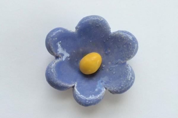 calamita-fiorellino-3